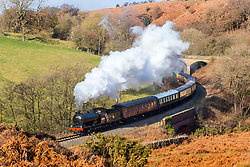 © Licensed to London News Pictures. 24/02/2019. Goathland UK. 1923 steam Locomotive 65894 passes through the village of Goathland on the North Yorkshire Moors railway this morning. Photo credit: Andrew McCaren/LNP