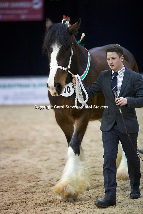 Oliver Chaffey  2nd place