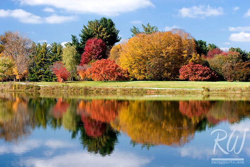 Fall Foliage Reflection in Lake Nevin, Bernheim Arboretum, Clermont, Kentucky