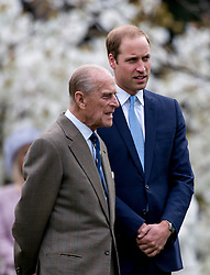 WINDSOR- UK -31-MAR-2014: Britains Queen Elizabeth, The Duke of Edinburgh and The Duke of Cambridge, Patron of the Windsor Greys Jubilee Appeal, attend the Windsor Greys statue unveiling in Windsor, Berkshire. The statue marks 60 years of The Queen's Coronation in 2013 and the important role played by Windsor Greys in the ceremonial life of the Royal Family and the Nation.<br /> Photograph by Ian Jones