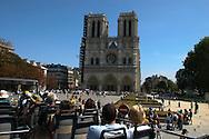 France. Paris. 4th district. tourist bus in front of notre dame