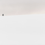 A person hikes to the top of a small snow-covered hill in Hughes Bay on the western coast of the Antarctic Peninsula.