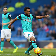 Lee Williamson during the Sky Bet Championship match between Brighton and Hove Albion and Blackburn Rovers at the American Express Community Stadium, Brighton and Hove, England on 8 November 2014.