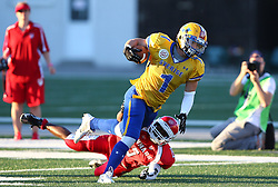 06.06.2014, Stadion Ravelinstrasse, Wien, AUT, American Football Europameisterschaft 2014, Spiel um Platz 5, Daenemark (DEN) vs Schweden (SWE), im Bild Rupan Ralf  Paramasivam, (Team Denmark, DB, #15) und  Sebastian Gauthier, (Team Sweden, RB, #1) // during the American Football European Championship 2014 game for place 5 between Denmark and Sweden at the UPC Arena, Graz, Austria on 2014/06/06. EXPA Pictures © 2014, PhotoCredit: EXPA/ Thomas Haumer