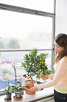 Woman tending plants on window sill