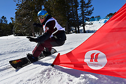 Europa Cup Finals Banked Slalom, FEISTRITZER Klaus, AUT at the 2016 IPC Snowboard Europa Cup Finals and World Cup