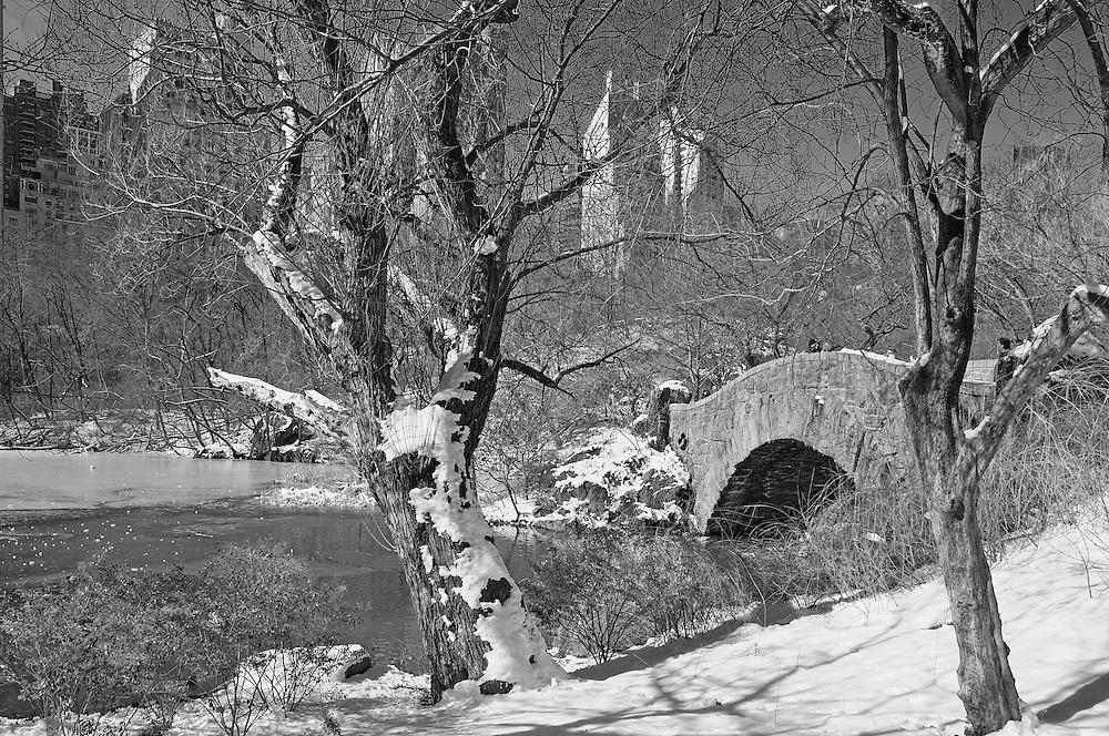 The Pond, Winter, Snow at Central Park, Manhattan, New York, New York, USA