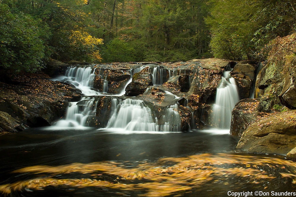 Whirlpools of colorful fallen leaves below the Falls on Waters Creek. Located in the Chestatee WMA in North Georgia near the town of Dahlonega.
