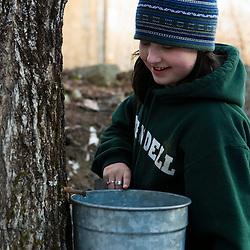 A girl checks a sap bucket in Strafford, Vermont.