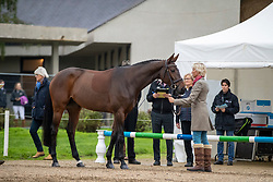 Klimke Ingrid, GER, Equistros Siena Just Do It<br /> Mondial du Lion - Le Lion d'Angers 2019<br /> © Hippo Foto - Dirk Caremans<br />  20/10/2019
