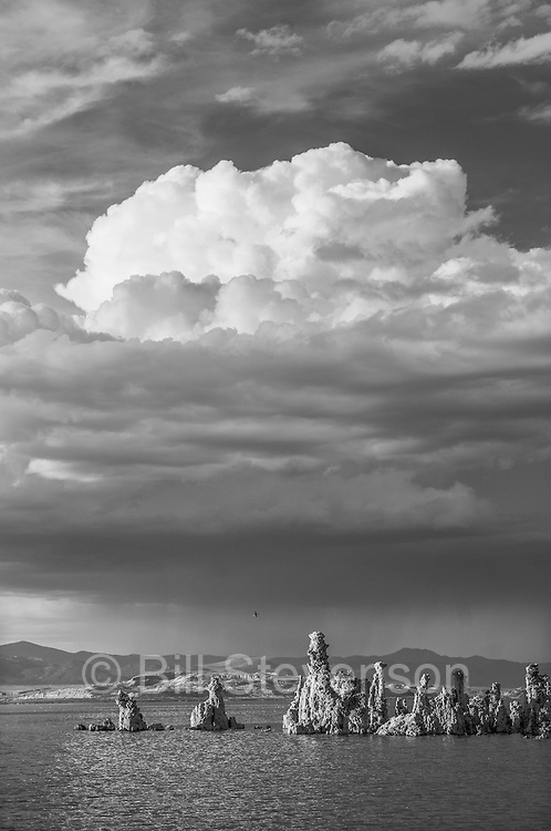 A black and white picture of thunderheads over the tufa towers of Mono Lake, CA.
