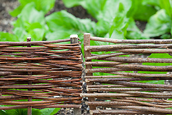 Woven hurdles used to edge beds