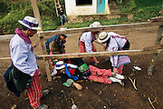 After the last jockey passes by, or out, everyone drifts off from the horse races to the town cemetery to celebrate All Saints Day. Hungry Planet: What the World Eats (p. 159). This image is featured alongside the Mendoza family of Todos Santos Cuchumatán, Guatemalal, images in Hungry Planet: What the World Eats.