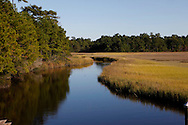 The Awendaw wetlands South  Carolina  Photograph by Dennis Brack