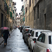 ITALY- Florence 2013