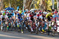 Cyclist blur at the start of the Peoples Choice Classic criterium at the start of the Tour Down Under, Australia on the 14 of January 2018 ( Credit Image: © Gary Francis / ZUMA WIRE SERVICE )