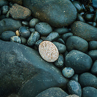 Saco da Bala na Ilha do Arvoredo, Reserva Biologica Marinha do Arvoredo, Florianopolis, Santa Catarina, Brasil, 06/12/2004 foto de Ze Paiva/Vista Imagens
