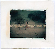 Maasai woman herding goats, Kenya<br />