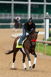 Derby 142 hopeful Nyquist with Jonny Garcia up were on the track for training, Tuesday, May 03, 2016 at Churchill Downs in Louisville.