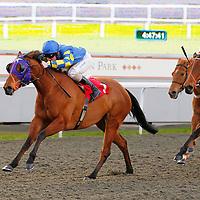 Ray Of Joy and F Tylicki winning the 4.45 race
