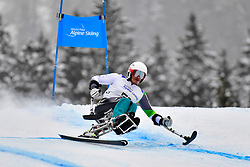 Downhill, TAIT Sam, LW11, AUS at the WPAS_2019 Alpine Skiing World Championships, Kranjska Gora, Slovenia