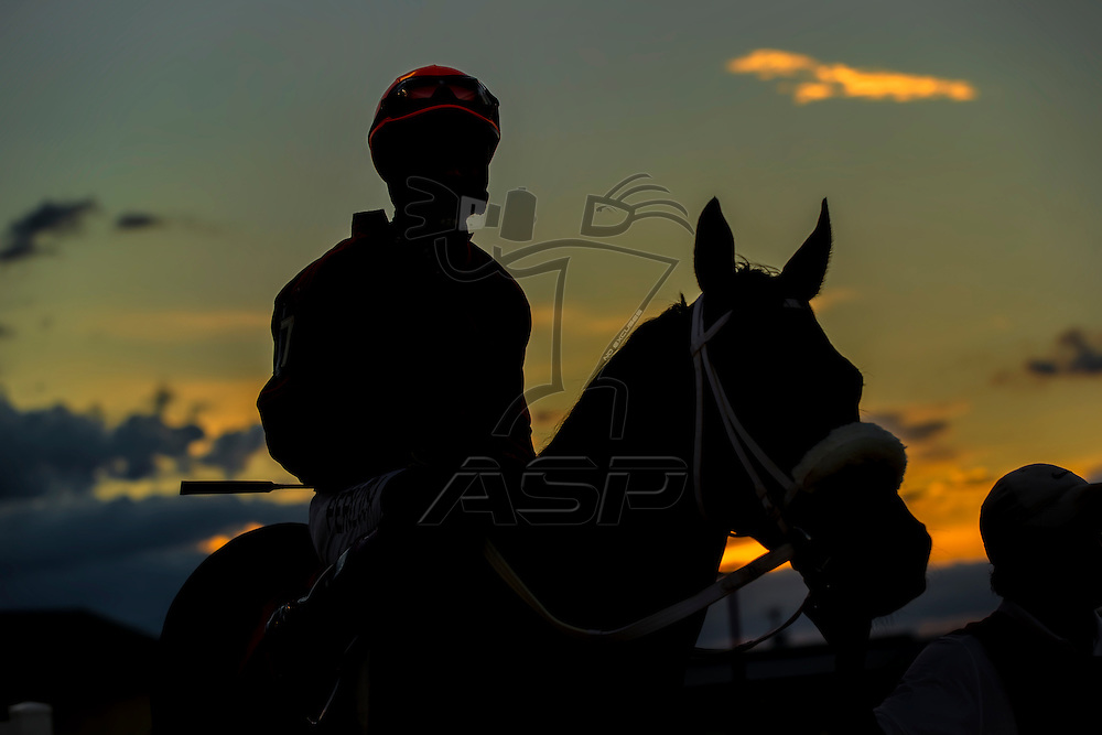 Images of horses and their riders at a horse race