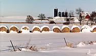 Winter Farmland