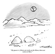 """My guess is: if there are rocks on the Moon, there are rocks on Mars."""