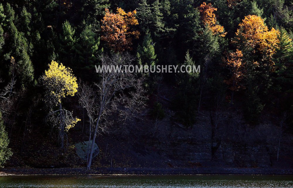 Alcove, NY - Trees show their fall colors on the shore of Alcove Reservoir on Oct. 25, 2009.  ©Tom Bushey / The Image Works