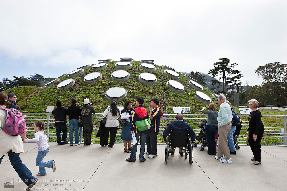A crowd of people take in the view atop the Living Roof at the California Academy of Science - San Francisco, California