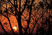 Sao Paulo_SP, Brasil...Por do sol em uma paisagem em Sao Paulo...Sunset in landscape in Sao Paulo...Foto: MARCUS DESIMONI /  NITRO
