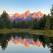 Morning stillness and reflections at Schwabacher Landing in Grand Teton National Park, Wyoming