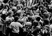 Fans at Rock Festival