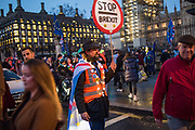 Outside Parliament,  London, 12 March 2019