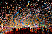 Austin's annual Trail of Lights in Zilker Park, Austin Texas, December 19, 2008. Named one of the Top Ten Holiday Lightings by USA Today, the Trail of Lights Festival has been held annually since 1965.
