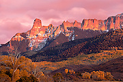 Freshly snow-dusted 11,781 ft Chimney Rock glows with sunset alpenglo on Cimarron Ridge in the Uncompahgre National Forest in the San Juan Mountains of SW Colorado, USA.  Autumn yellow-leaved aspen carpet the slopes below a thick coniferous forest.