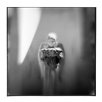 USA, Georgia, Savanna, Blurred black and white image of graveyard statue of angel at Bonaventure Cemetery