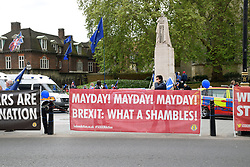 Remain Brexit protesters outside Parliament, London UK 29 April 2019
