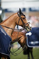 Guery Jerome, (BEL), Grand Cru vd Rozenberg winner of the Grand Prix Longines - Ville de La Baule<br /> La Baule 2016<br /> © Hippo Foto - Dirk Caremans<br /> 15/05/16