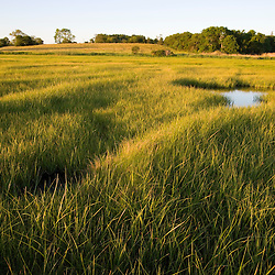 Early morning on a salt marsh in Essex, Massachusetts.