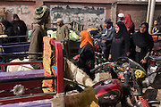 Locals shop at the weekly market at Qurna, a village on the West Bank of Luxor, Nile Valley, Egypt.