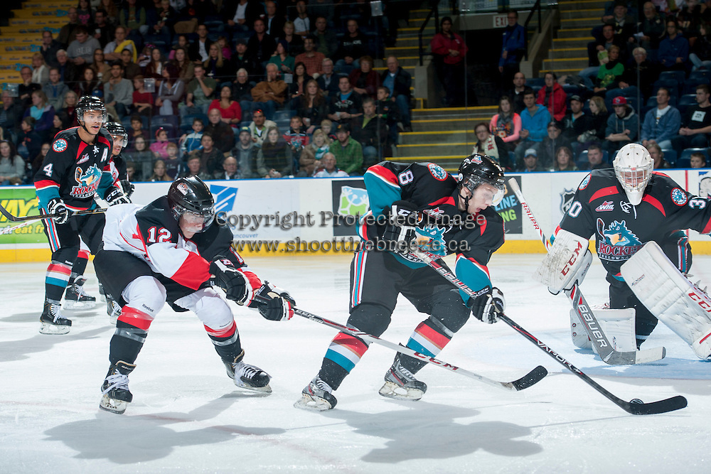 KELOWNA, CANADA - OCTOBER 19: Cole Martin #8 of the Kelowna Rockets takes control of the puck from Jansen Harkins #12 of the Prince George Cougars on October 19, 2013 at Prospera Place in Kelowna, British Columbia, Canada.   (Photo by Marissa Baecker/Shoot the Breeze)  ***  Local Caption  ***