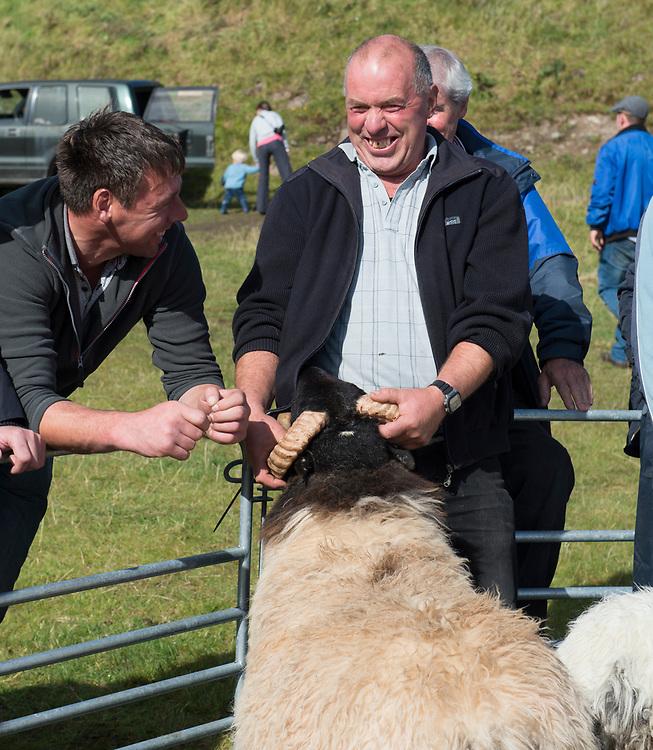 Clare Island Ram Fair &amp; Sheep Dog Trials.<br /> James O'Toole and Joe O'Malley share a laugh at the Clare Island Ram fair. Pic: Michael Mc Laughlin
