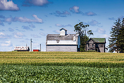 An old barn still stands proudly beside fields of corn and soybeans.