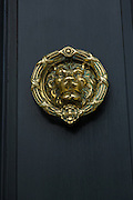 A decorative lion door knocker in Charleston, SC