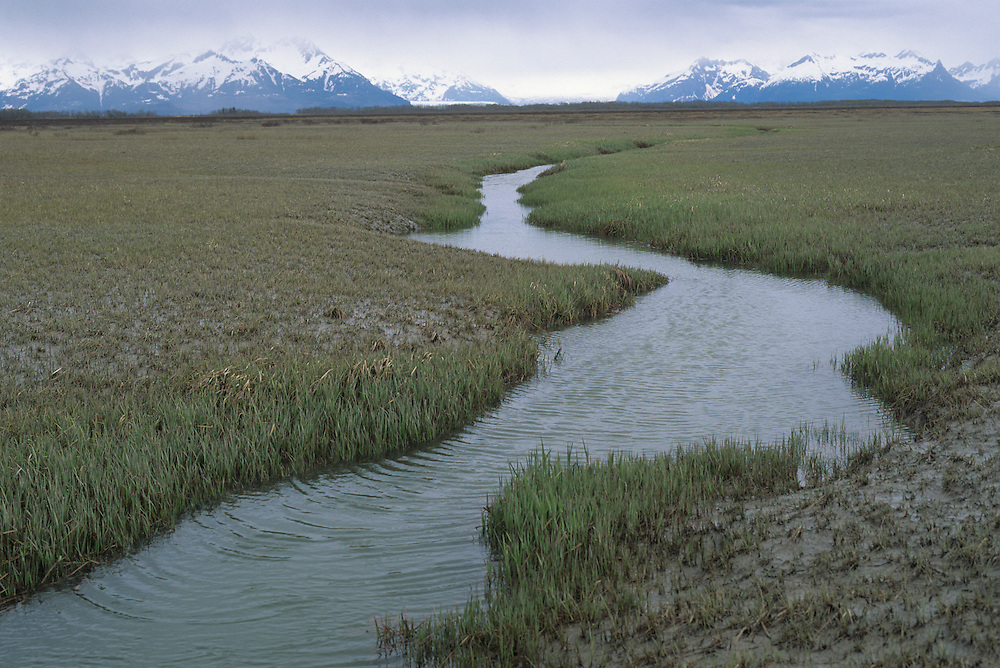 USA, Alaska, Winding waterway and mudlfats in Copper River Delta Critical Habitat Area near Cordova