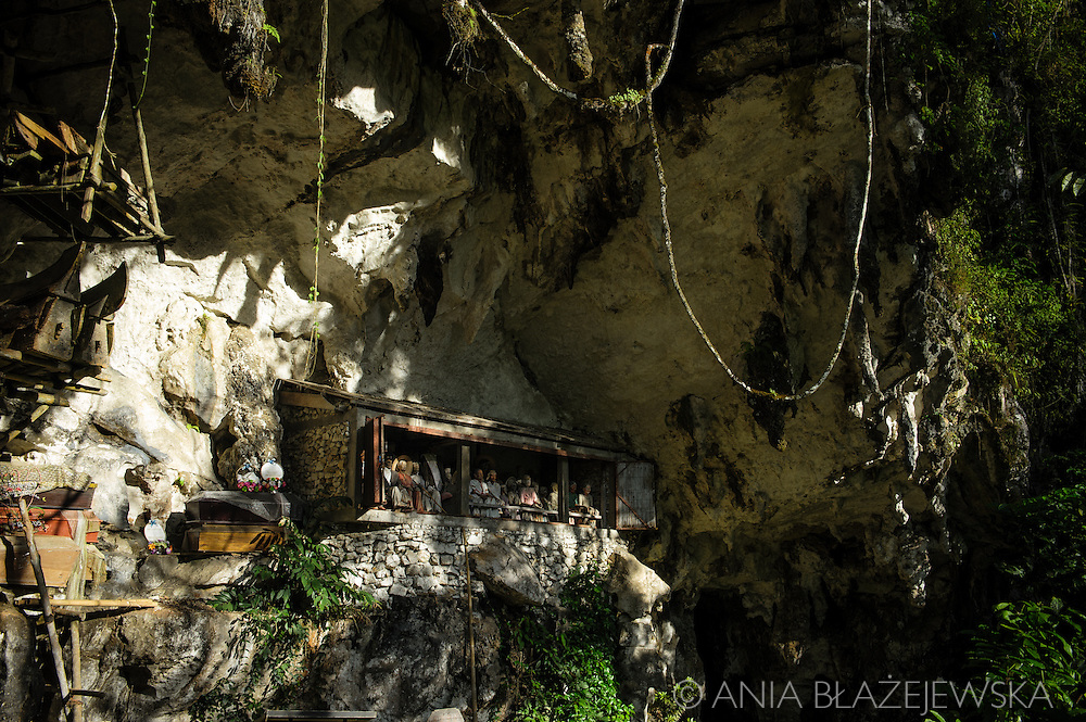 Indonesia, Sulawesi, Tana Toraja. Burial cave in Londa.<br /> <br /> Tana Toraja, situated in the south of Sulawesi, sometimes reminds alive museum full of traditional boat-shaped houses painted with Torajan patterns, burial caves or hanging graves guarded by tau tau (a deceased shaped wooden sculptures(, all of them situated in a beautiful scenery of green rice terraces.