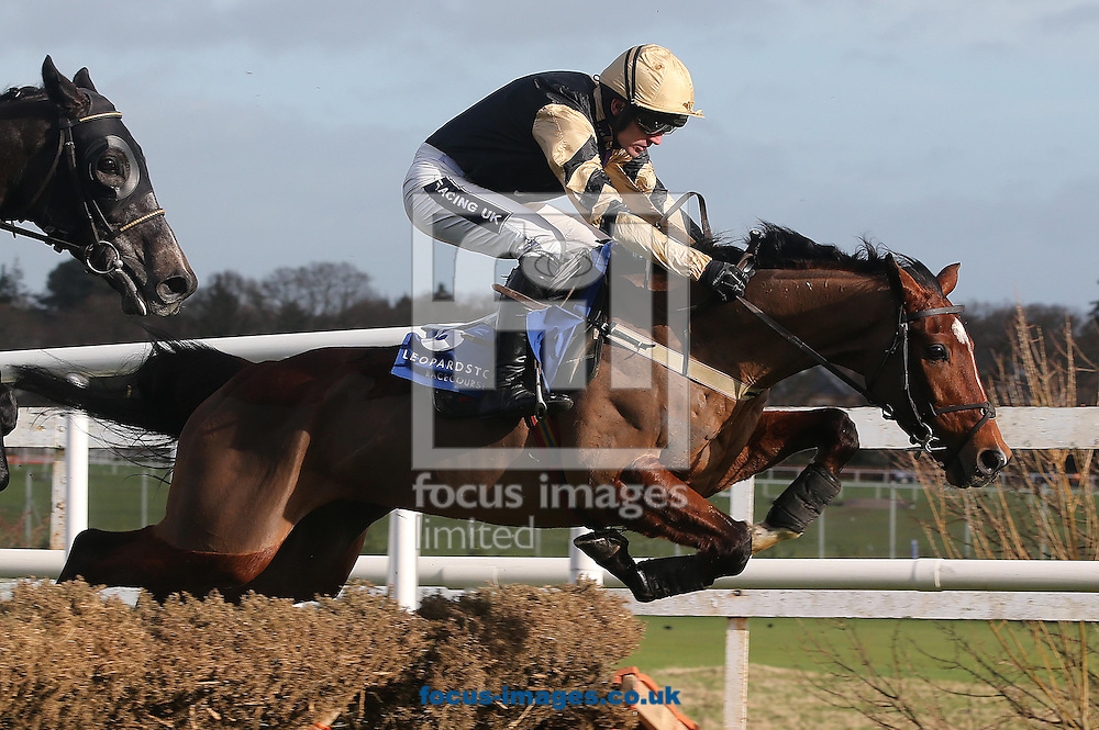 Ruby walsh on Ivan Grozny pictured at Leopardstown Racecourse, Leopardstown<br /> Picture by Lorraine O'Sullivan/Focus Images Ltd +353 872341234<br /> 09/02/2014