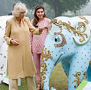 08.11.2017; New Delhi, India: CAMILLA, DUCHESS OF CORNWALL AND  PRINCE CHARLES<br />