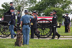 K-9 officers and their partners stand at attention as a carriage carries fallen Bardstown police officer Jason Ellis' body to his burial plot, Thursday, May 30, 2013 at High View Cemetery in Chaplin. Photo by Jonathan Palmer